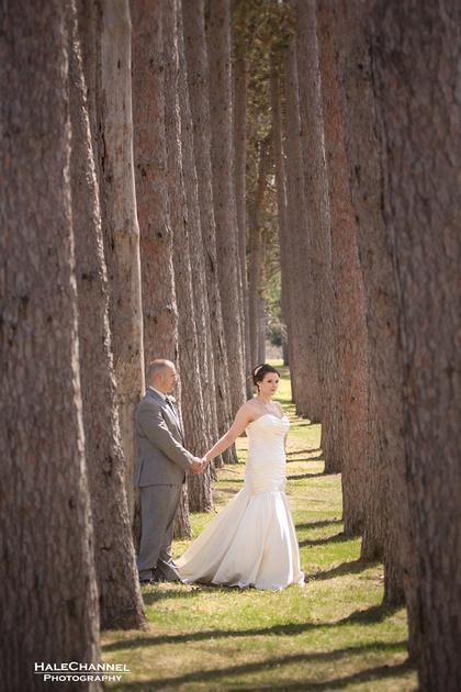 wedding tekoa westfield