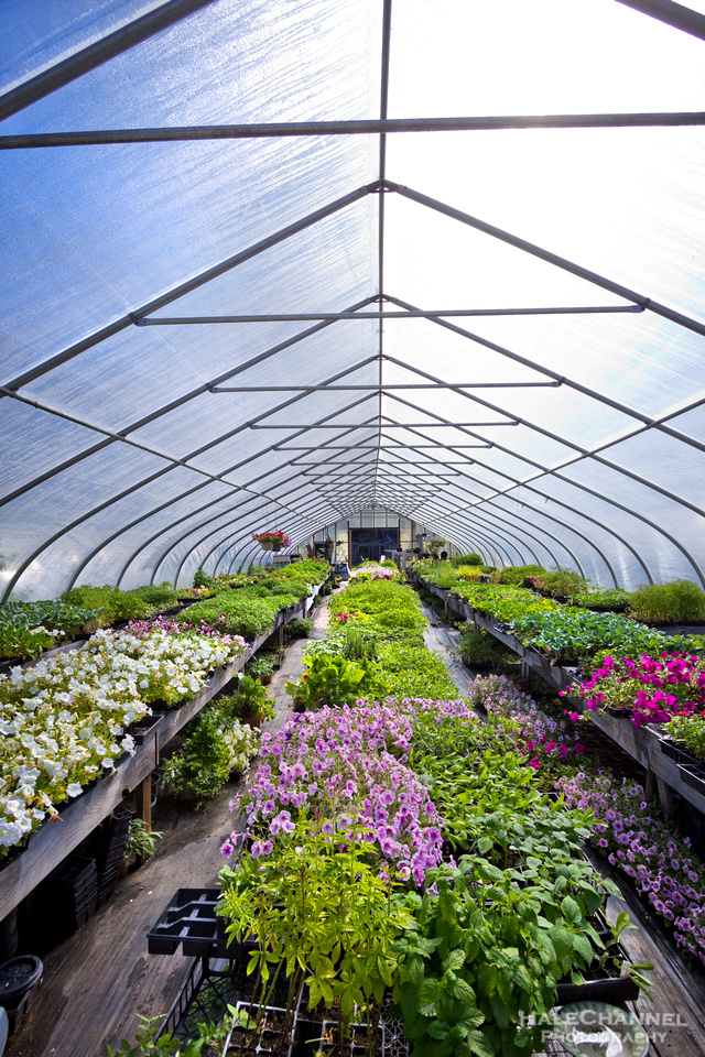 Hartman's Herb Farm Greenhouse