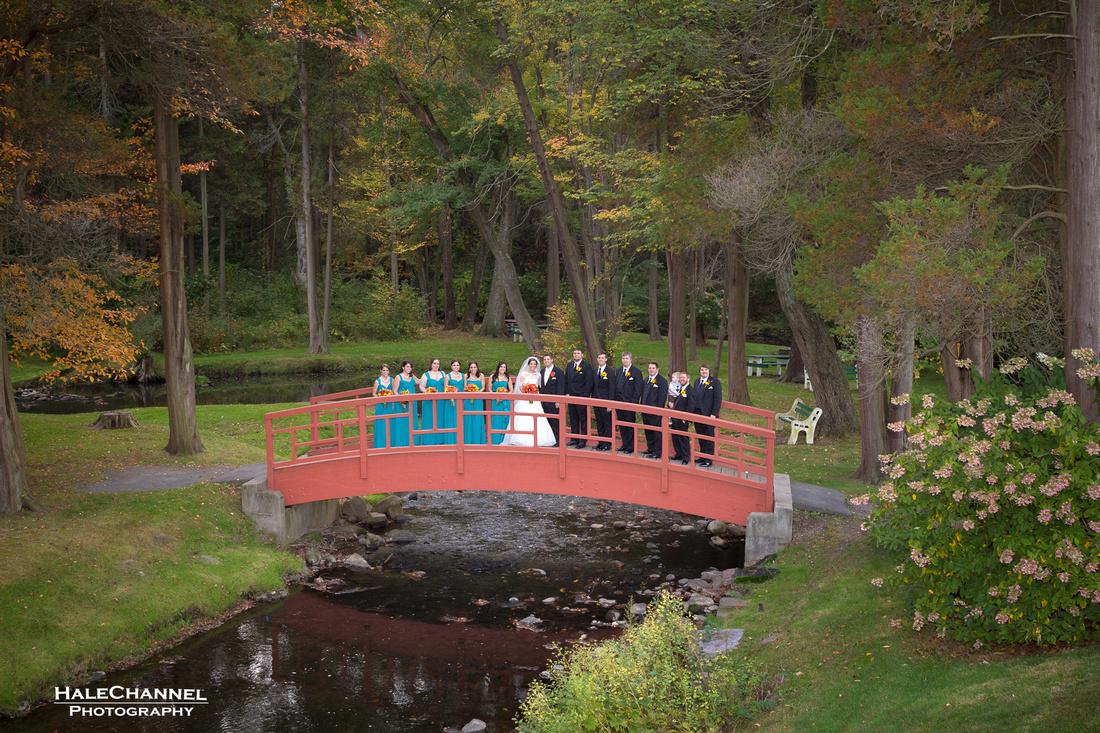 barney carriage wedding